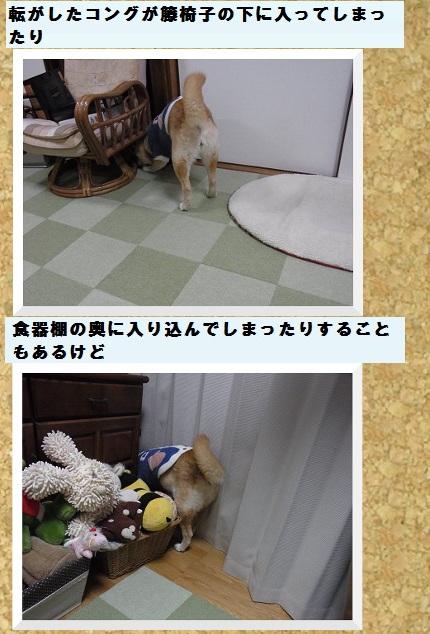 コルクボード・ゴロゴロ4