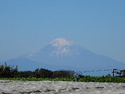 160101富士山1