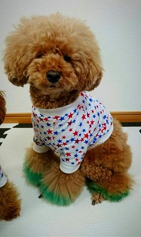 M*mania★マリンスターTシャツ ライムくん*