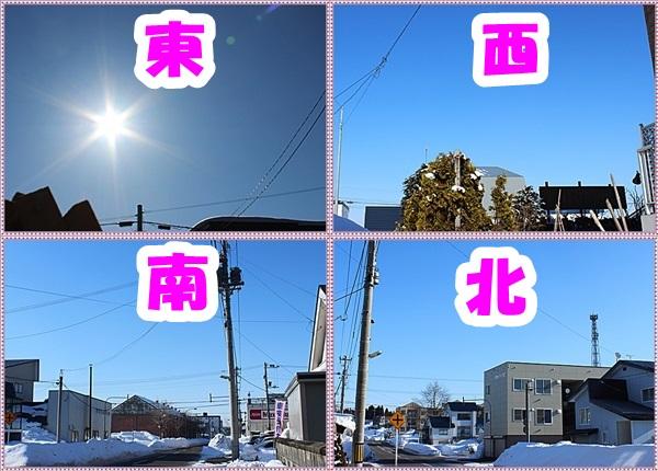 IMG_3329-ztile.jpg