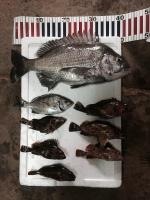 FullSizeRender和田s漁港1