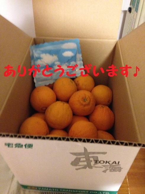 IMG_5500.jpg
