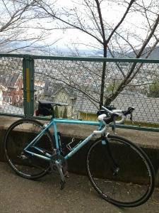 20160313sakura climb