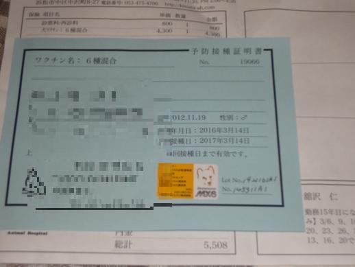 DSC03631.jpg