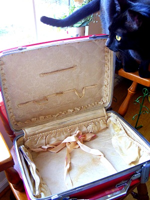 vinスーツケース