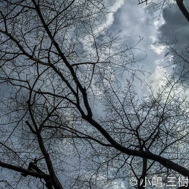 IMG_8585-2.jpg