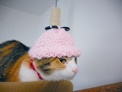みくミニ―帽