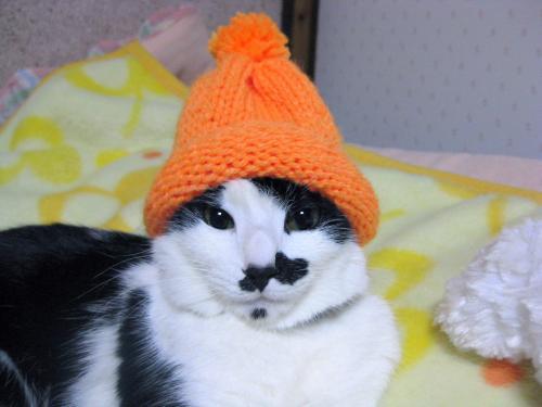 くぅぶちゃいく帽