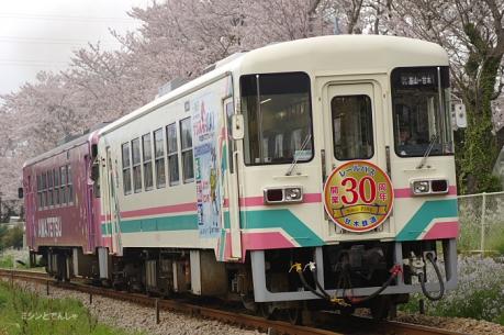 甘鉄30_160401_5
