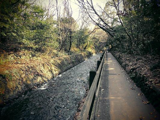 01501吊り橋へ