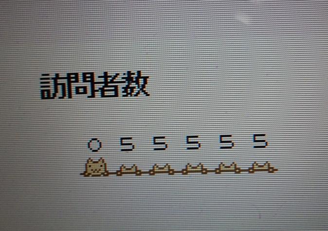 DSC00009 (7)