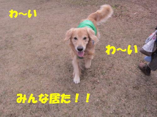 IMG_2219.jpg