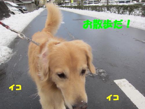 IMG_2299.jpg
