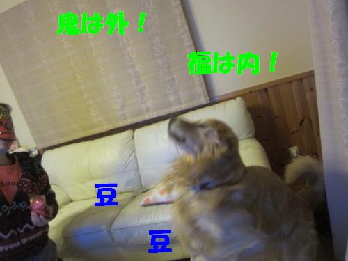 IMG_2352.jpg