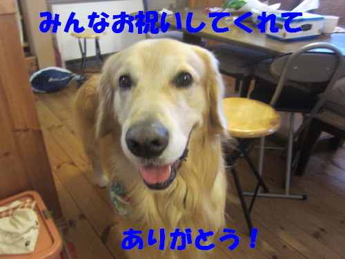IMG_2478.jpg