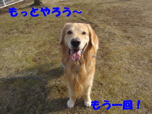 IMG_2522.jpg