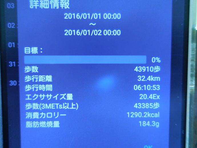 160101伊勢参 (8)