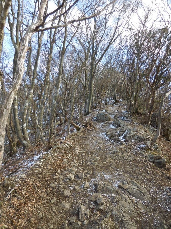 160113高見山 (5)
