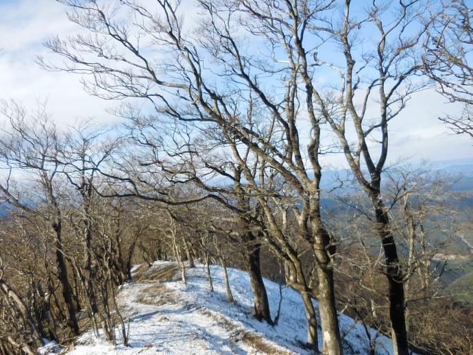 160113高見山 (6)