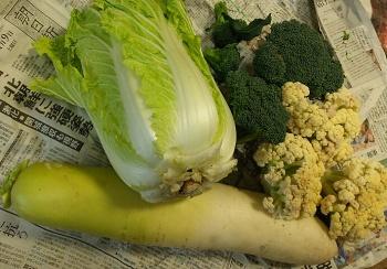 160113野菜