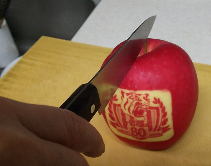 151205トラリンゴ (2)