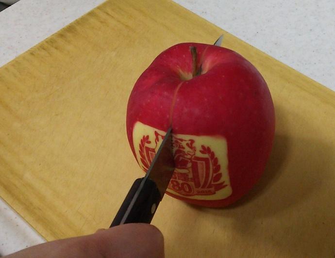 151205トラリンゴ (3)