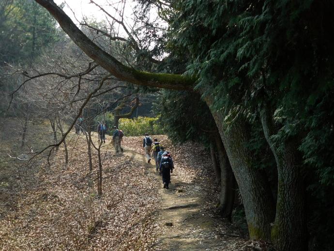 160227矢田丘陵 (1)