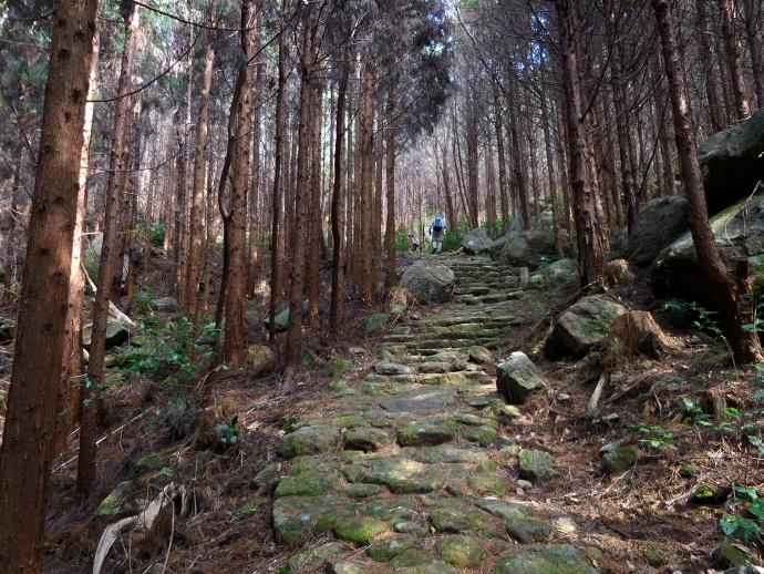 160305熊野古道 (4)