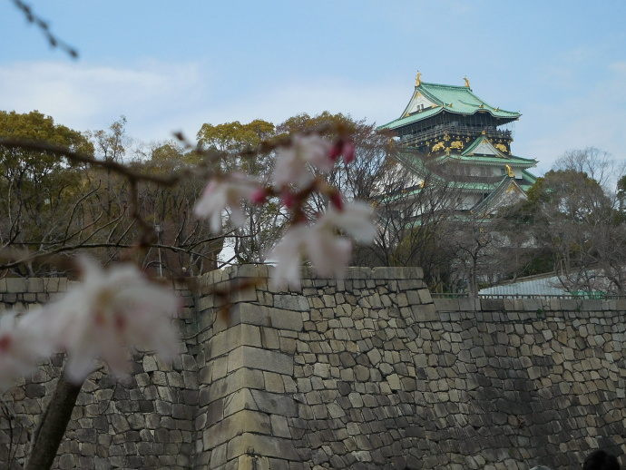 160329城桜 (4)