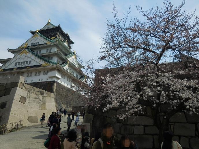 160329城桜 (5)