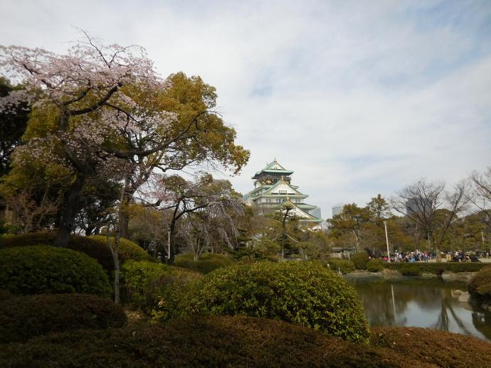 160329城桜 (6)