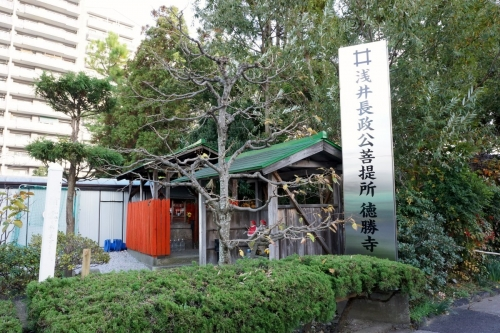 2浅井菩提寺 (1200x800)