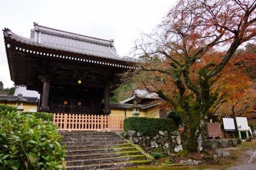 1蓮華寺 (1200x800)