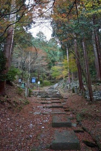 6登る (800x1200)