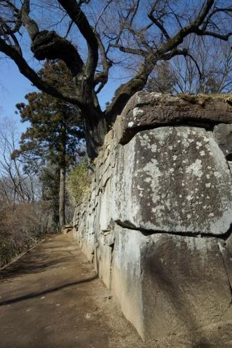 3石垣 (800x1200)