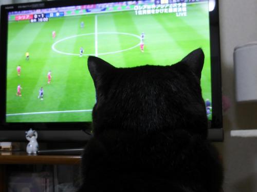サッカー観戦 2