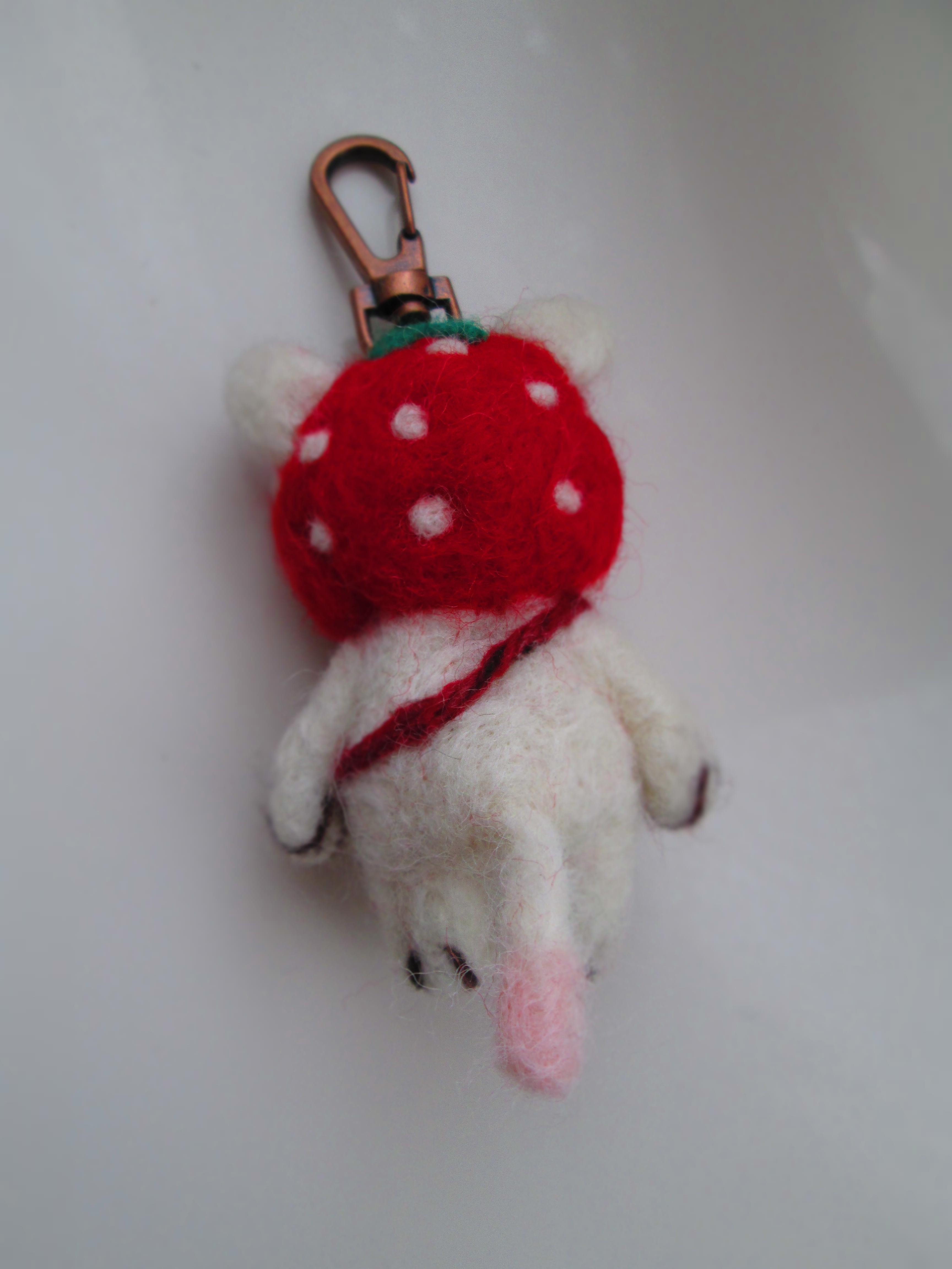 IMG_9837 羊毛 (2)