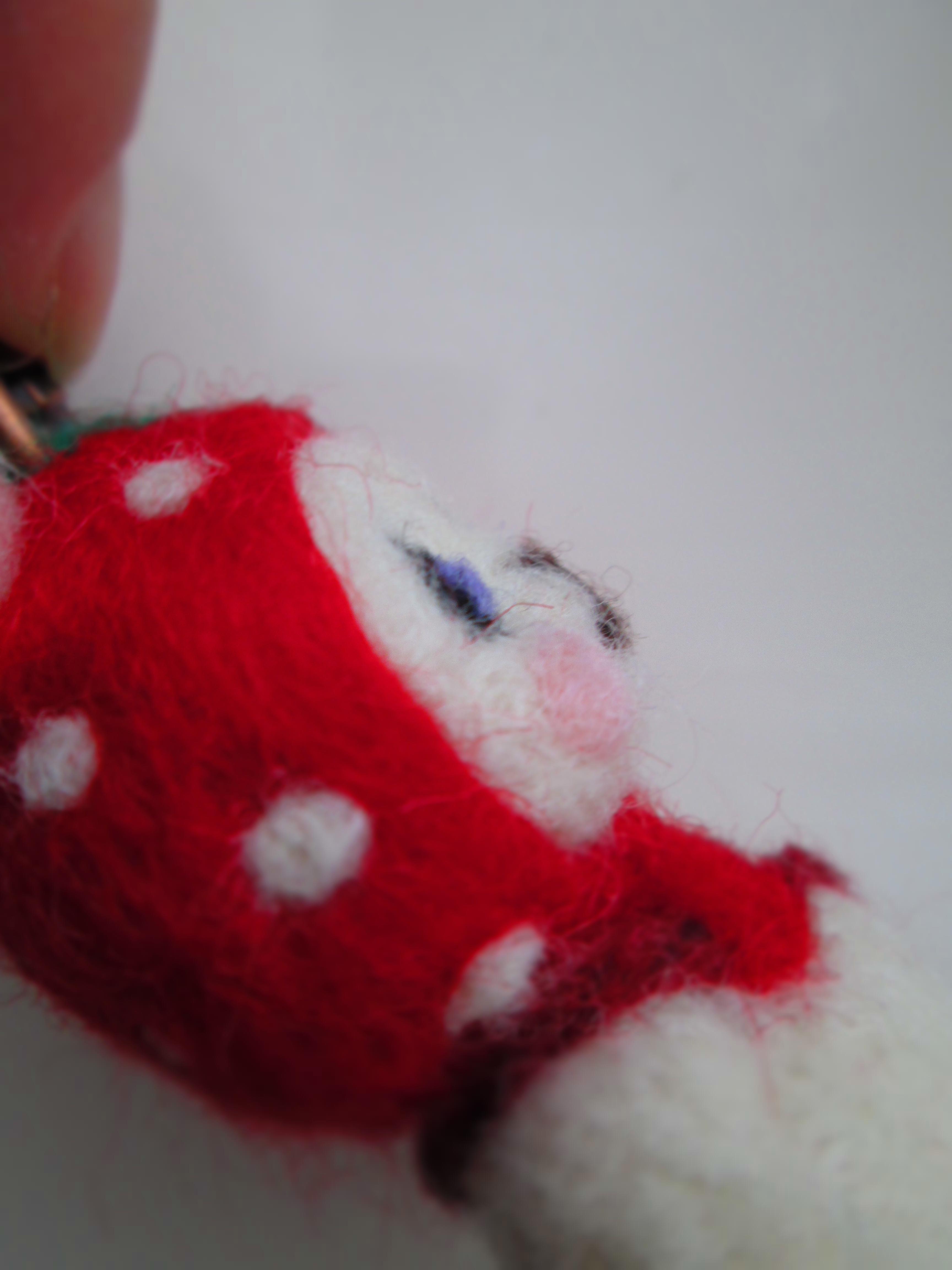 IMG_9837 羊毛 (3)