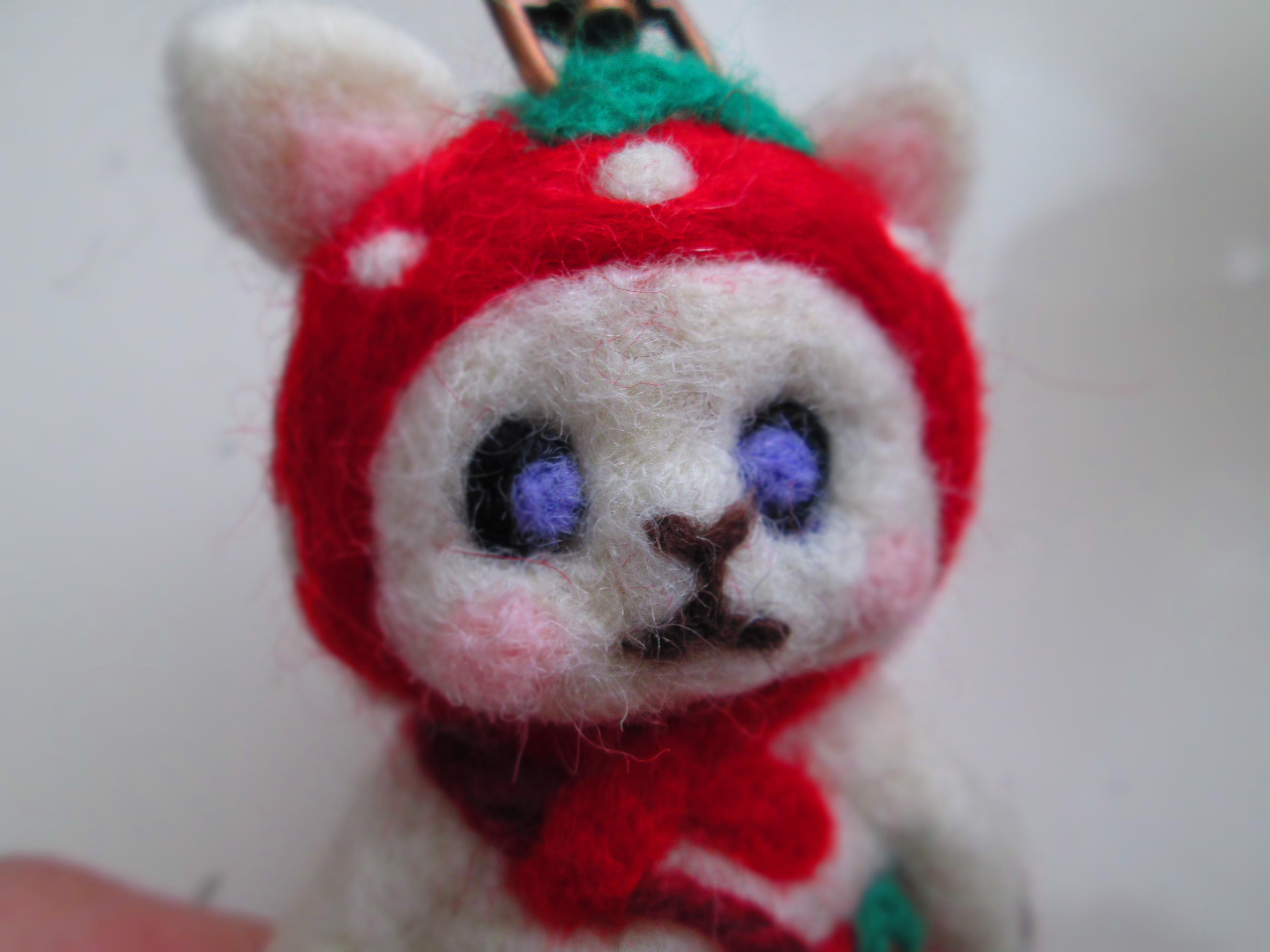 IMG_9837 羊毛 (4)