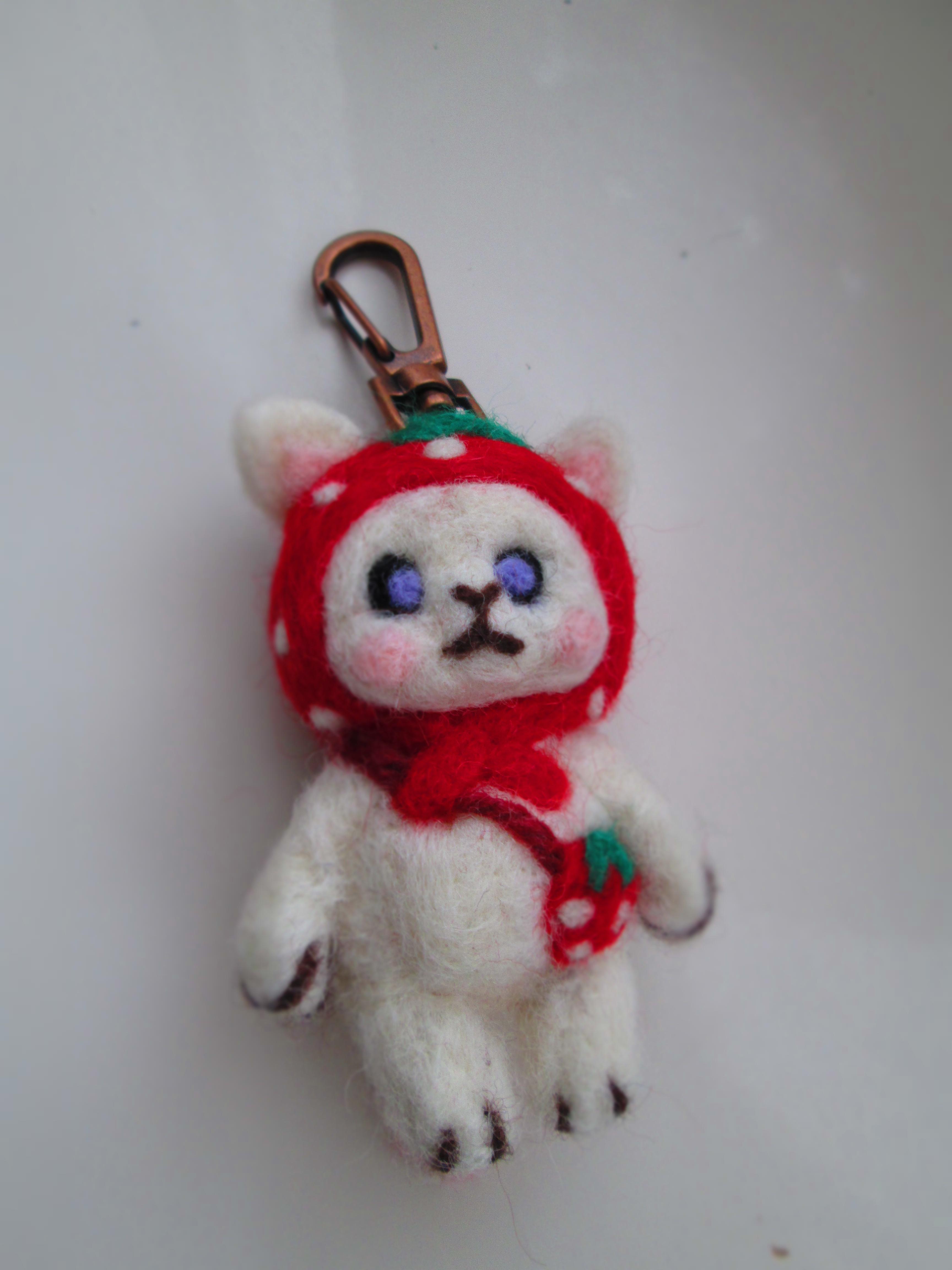 IMG_9837 羊毛 (1)