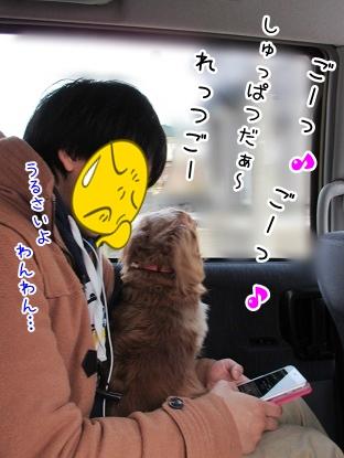 kinako4271.jpg