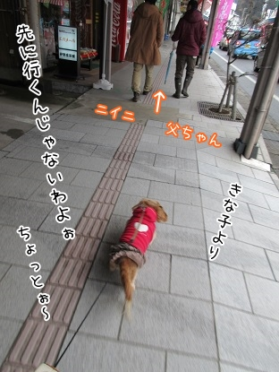 kinako4272.jpg