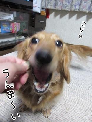 kinako4280.jpg