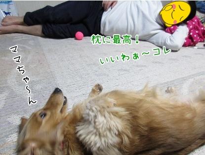 kinako4294.jpg