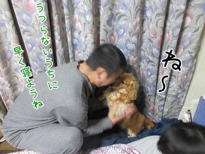 kinako4365.jpg