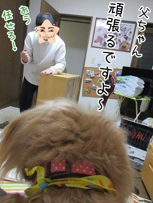 kinako4368.jpg