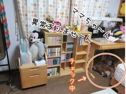 kinako4369.jpg