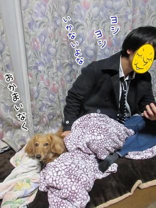 kinako4387.jpg