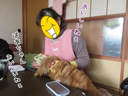 kinako4394.jpg