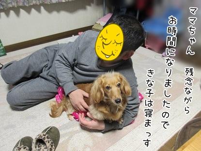 kinako4403.jpg